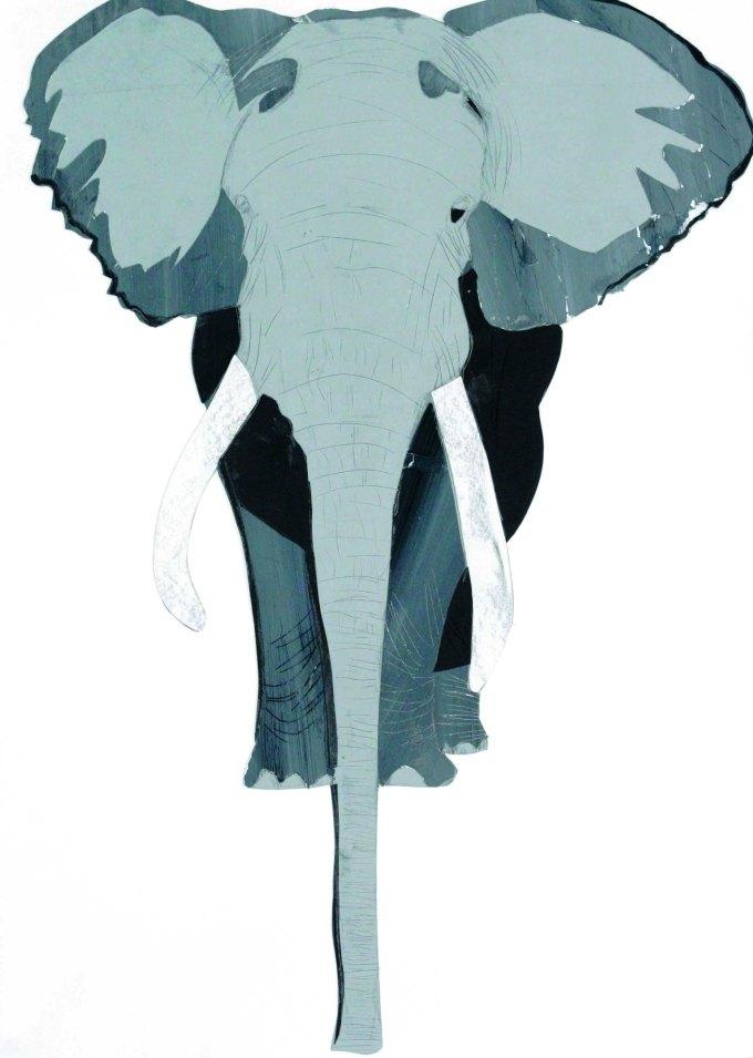 Des animaux pas comme les autres | Éléphant - Détaillé