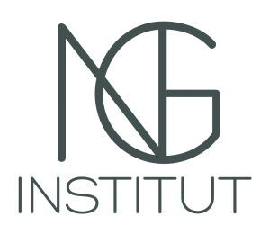 NG Institut | Logotype
